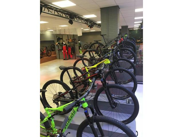 diiferent kinds of road and mountain bikes