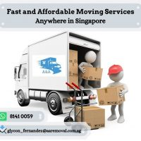 Lorry with driver + 1 helper $100 (+65 8141 0059)