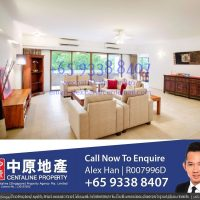 Orchard The Cairnhill condo apartment for rent