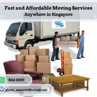 Lorry with 2 men fr $100 Call +65 8141 0059