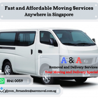 Van for Disposal fr $50 Call +65 8141 0059